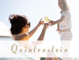 Verbetermijnhuid Medex Quintenstein